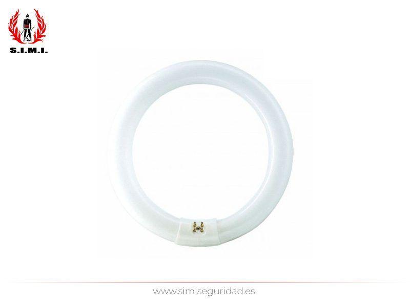 240880 - Tubo fluorescente circular 30 cm 32 w