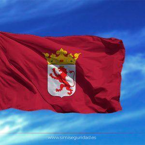 BANDERA375X50 - Bandera Leon estampada 75x50