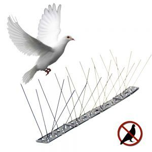 Disuasorio aves